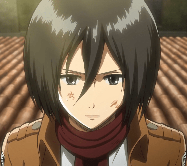 Mikasa_Ackerman_Anime