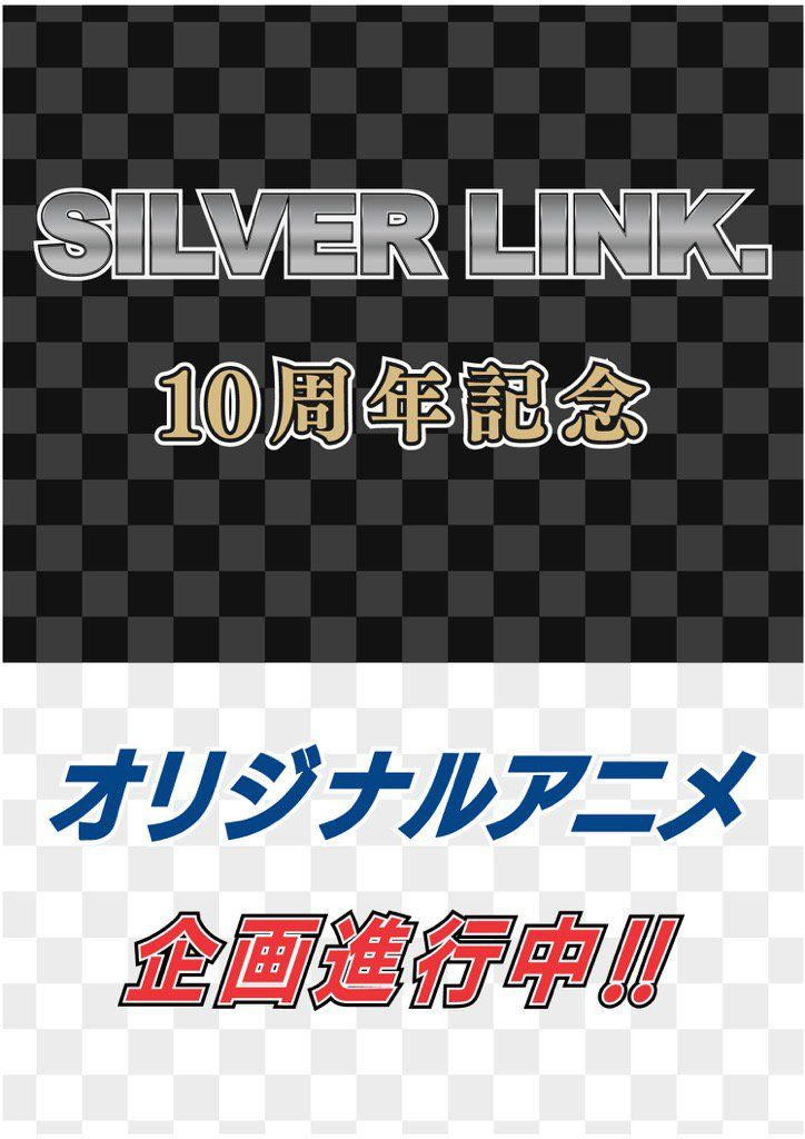 silver-link-proyect-10-aniverary