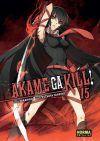 Akame Ga Kill #15