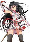 Akame ga kill! Zero #1