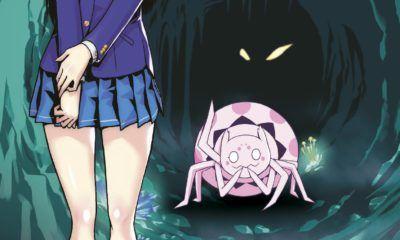 si soy una araña