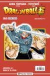 Dragon Ball serie roja #222