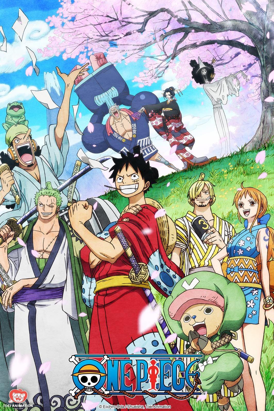 One Piece - vuelve