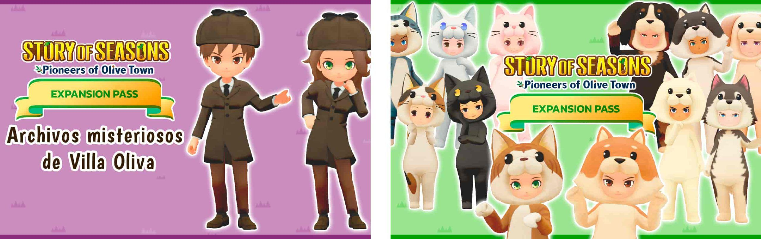 Story of seasons expansion