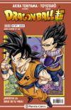 Dragon Ball Super (Serie Super) #271